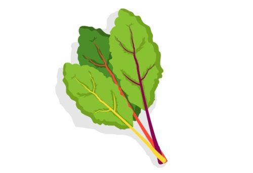 Nutritious-Vegetables-Chard-CircleCare