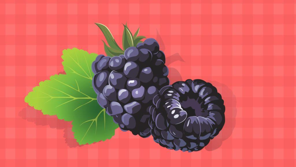 Blackberry-CircleCare