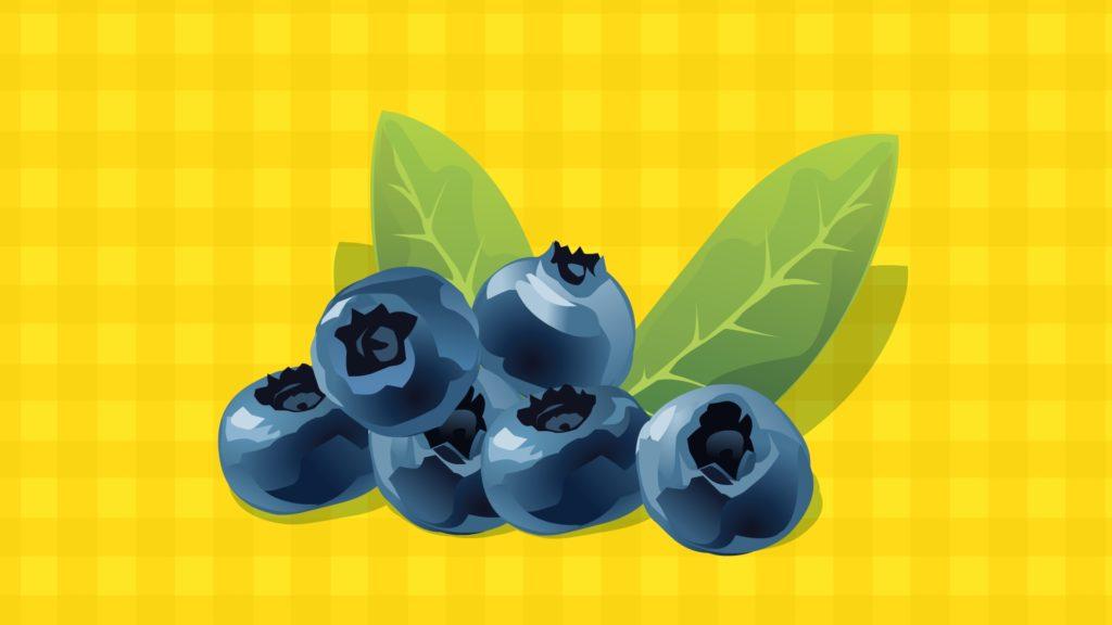 Blueberry-CircleCare
