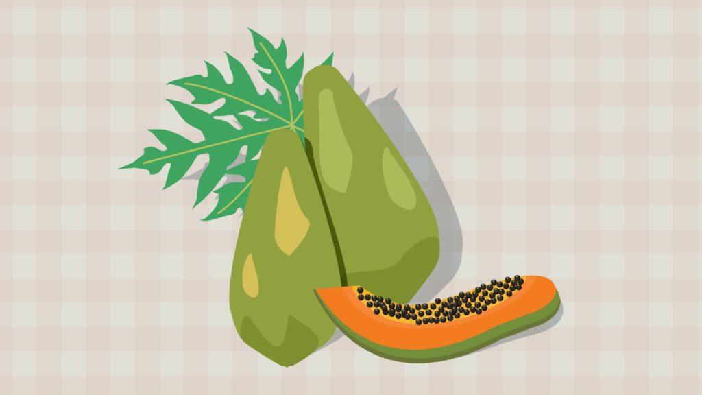 Papaya-CircleCare