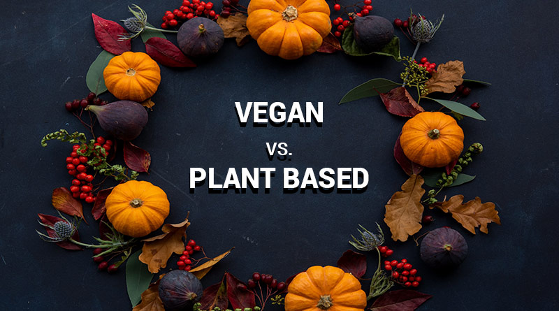 Vegan-vs-Plant-Based-diet-circlecare