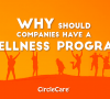 Why should companies have a wellness program?