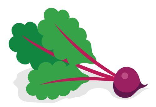 Nutritious-Vegetable-Beet-Green-CircleCare