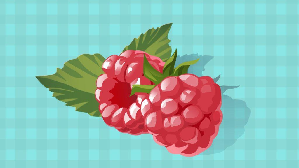 Raspberry-CircleCare